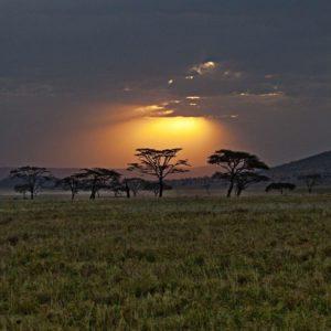 download 1680×1050 Sunset kenya africa Wallpaper