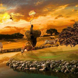 download Africa wallpaper – 1179186