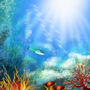 download 33 Attractive Aquarium background – Technosamrat