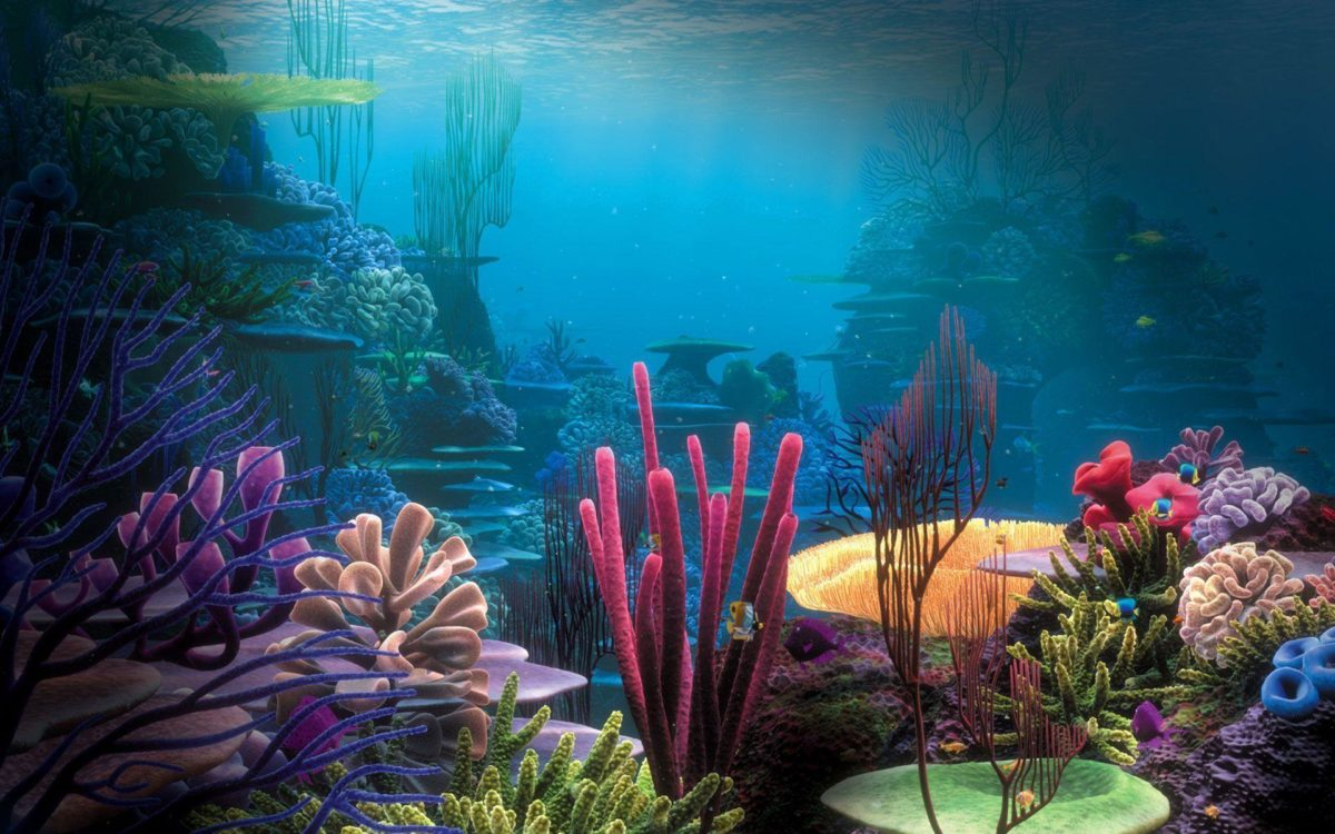 Aquarium Wallpapers – Full HD wallpaper search