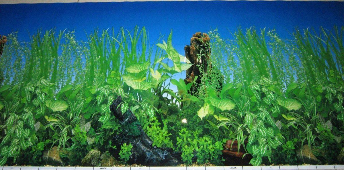 fish aquarium supplies images 1600 x 792 397 kb jpeg courtesy of …