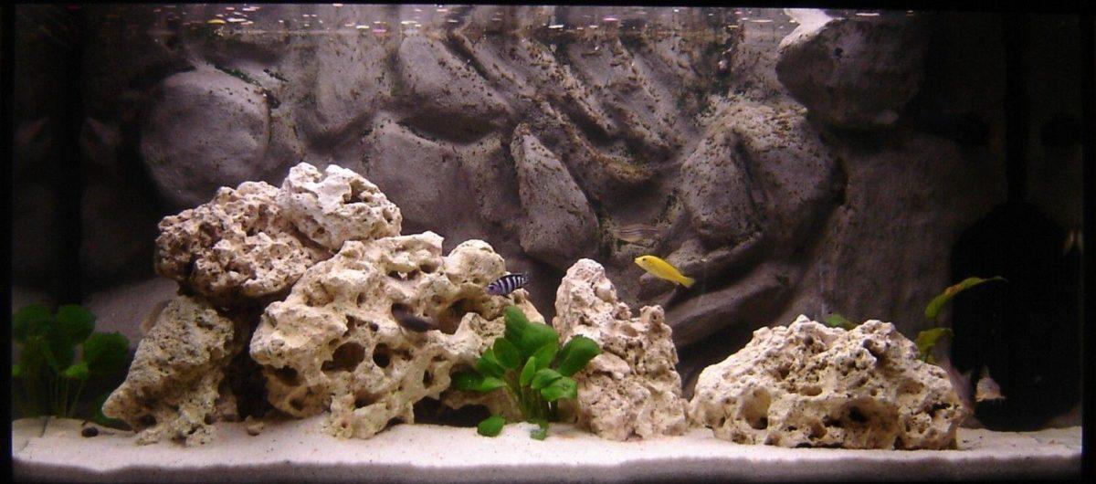 Do-It-Yourself Aquarium background
