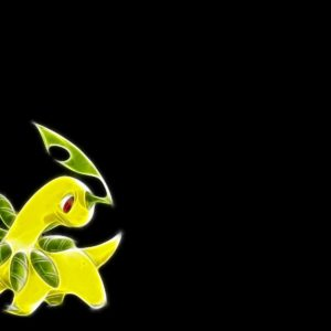 download Games: Bayleef Pokemon Full HD Wallpaper 1920×1200 for HD 16:9 …