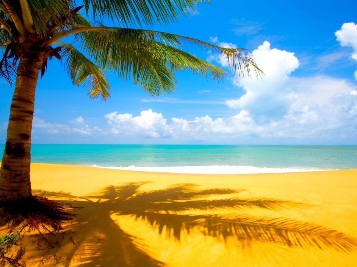 Beach Wallpapers | Free Desk Wallpapers