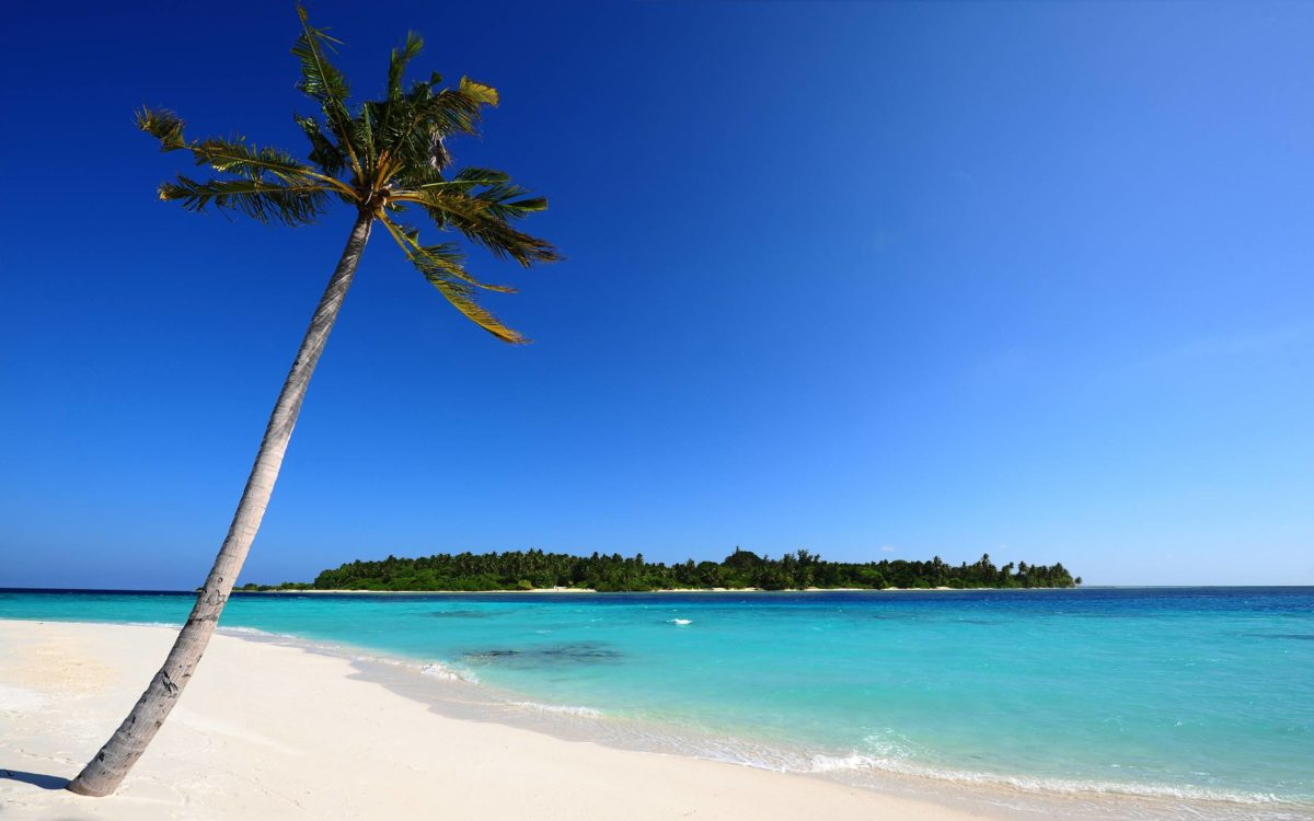 Maldivian Beach Wallpapers | HD Wallpapers