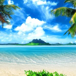 download Tropical Wallpapers – Full HD wallpaper search