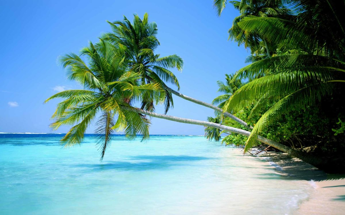 Tropical Beach Wallpaper Widescreen Hd Pictures 4 HD Wallpapers …