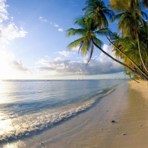 download 1250 Beach Wallpapers | Beach Backgrounds Page 7