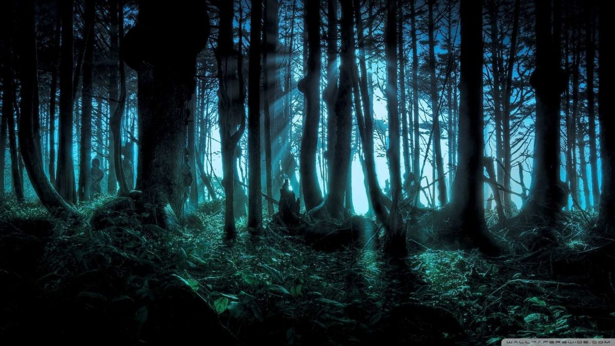 Wallpapers For > Hd Wallpapers Dark Nature 1080p