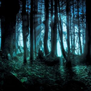 download Wallpapers For > Hd Wallpapers Dark Nature 1080p