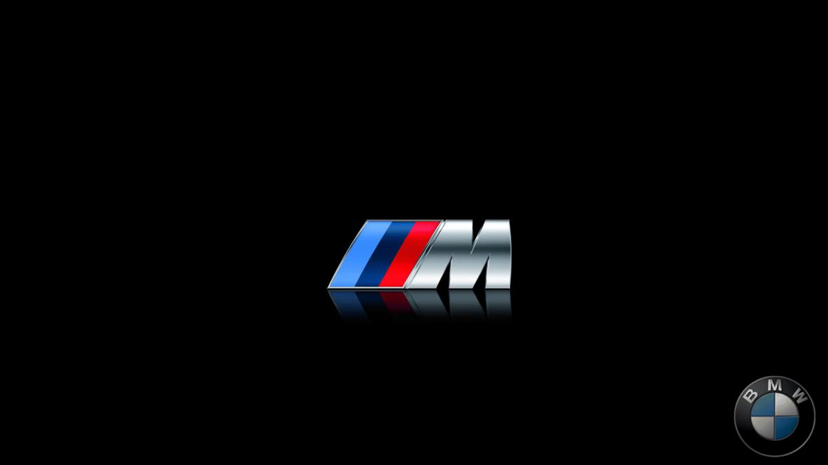 Bmw M Logo wallpaper – 700450