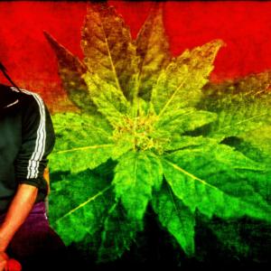 download Download HD Bob Marley Wallpapers