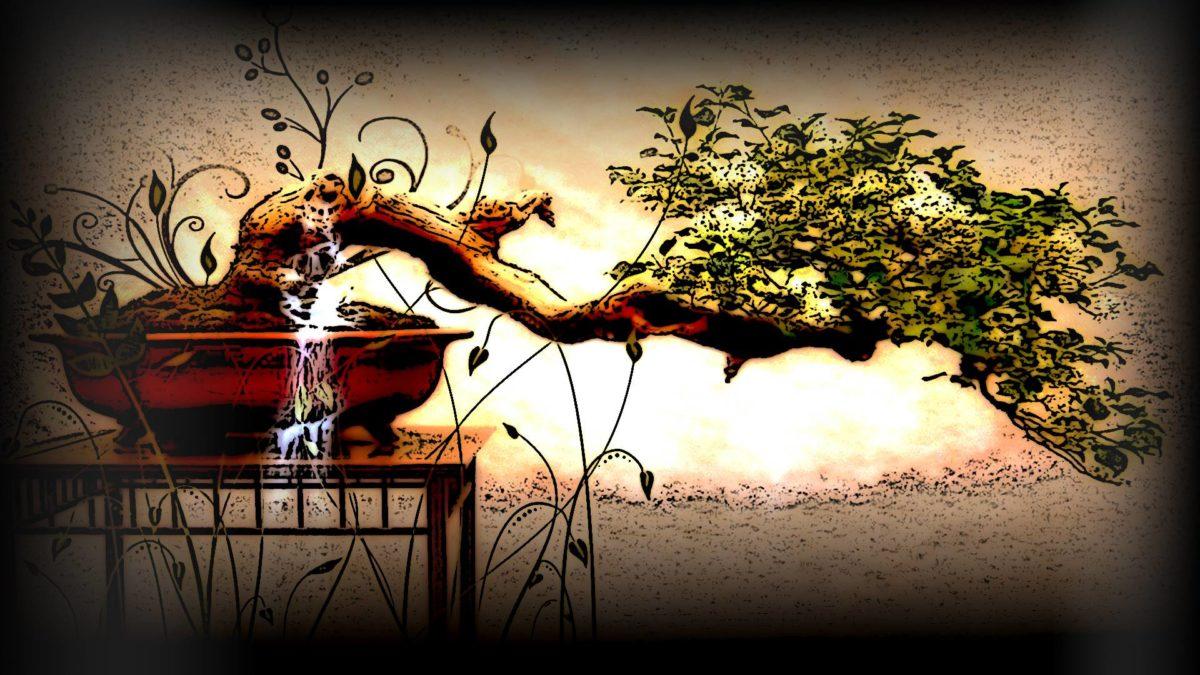 Bonsai Tree Wallpaper by PlanetaryPenguin on DeviantArt