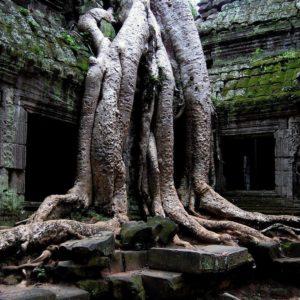 download Desktop Wallpaper · Gallery · Nature · Temple Buddha   Free …