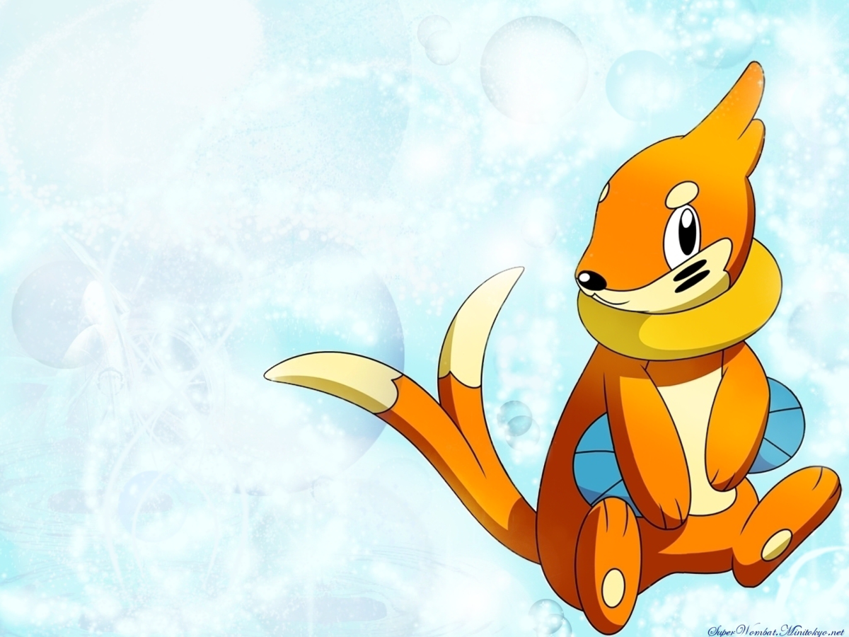 5 Buizel (Pokemon) HD Wallpapers | Background Images – Wallpaper Abyss