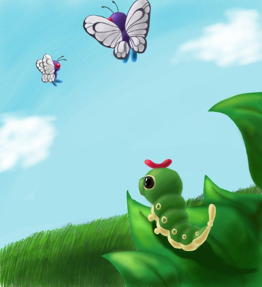 Caterpie and Butterfree | Butterfly | Pinterest | Pokémon and …