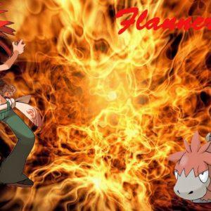 download Pokemon Flannery w Camerupt Wallpaper by Hellhound316 on DeviantArt