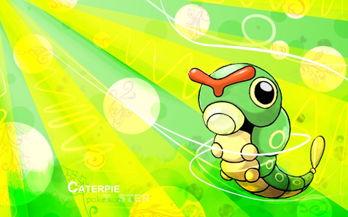 Caterpie Wallpaper – images free download