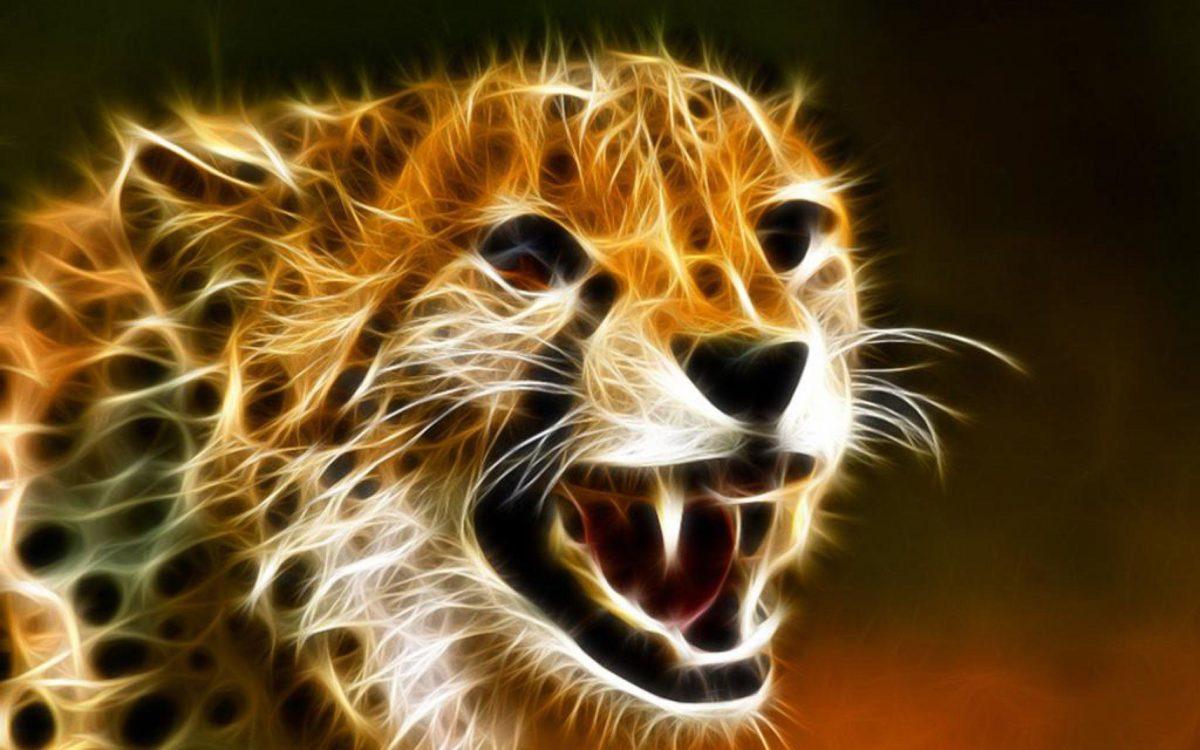 Cheetah Baby Animal Wallpaper Pc #5520 Wallpaper | Wallpaper …