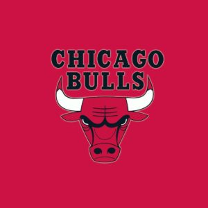 download Bulls Logo Red Background Wallpaper | ChicagoBullsPictures.com