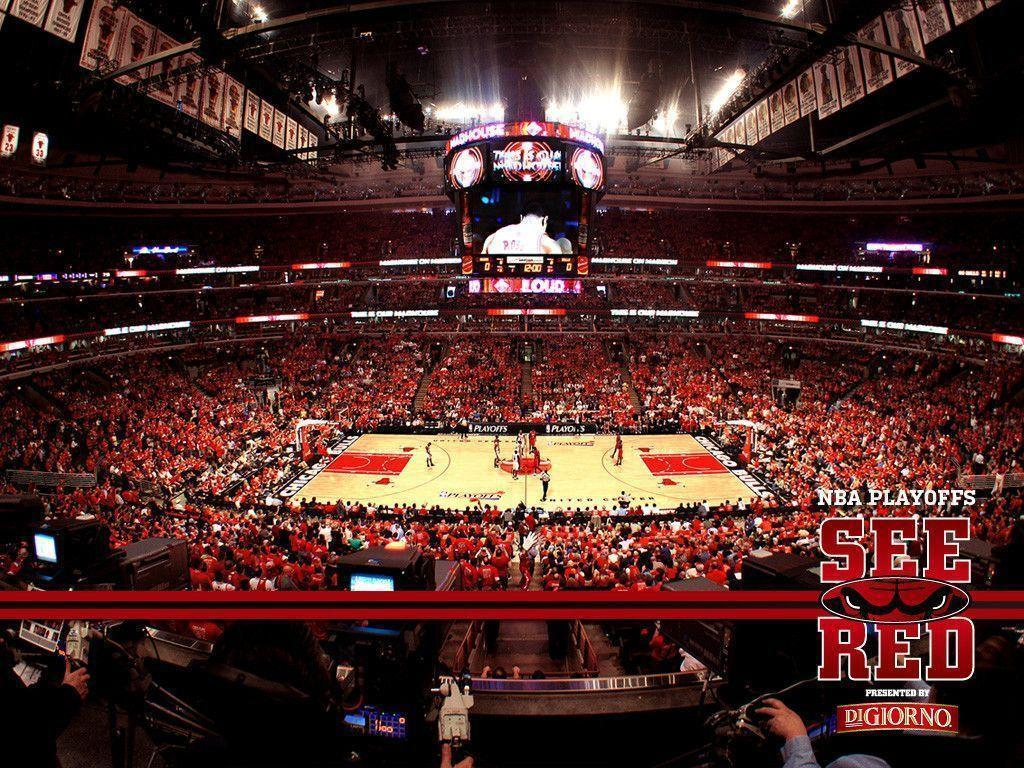 Chicago Bulls wallpapers | Chicago Bulls background – Page 5