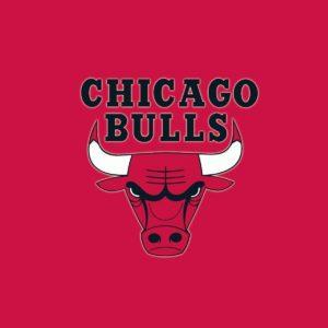 download Chicago Bulls Desktop Backgrounds Hd 24314 Images | wallgraf.