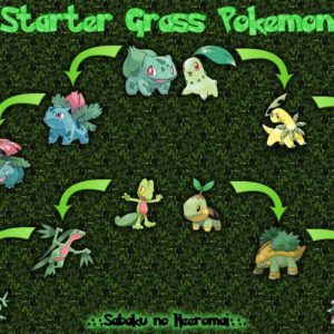 download Grass Pokemon Wallpaper by SabakuNoHeeromai on DeviantArt