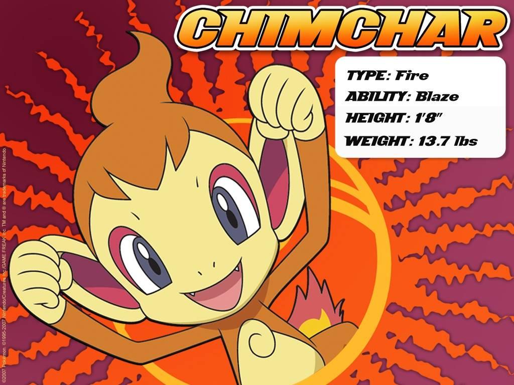 chimchar – Pokemon Wallpaper