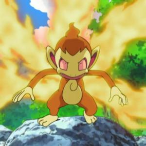 download Image – Ash Chimchar Blaze.png   Pokémon Wiki   FANDOM powered by Wikia