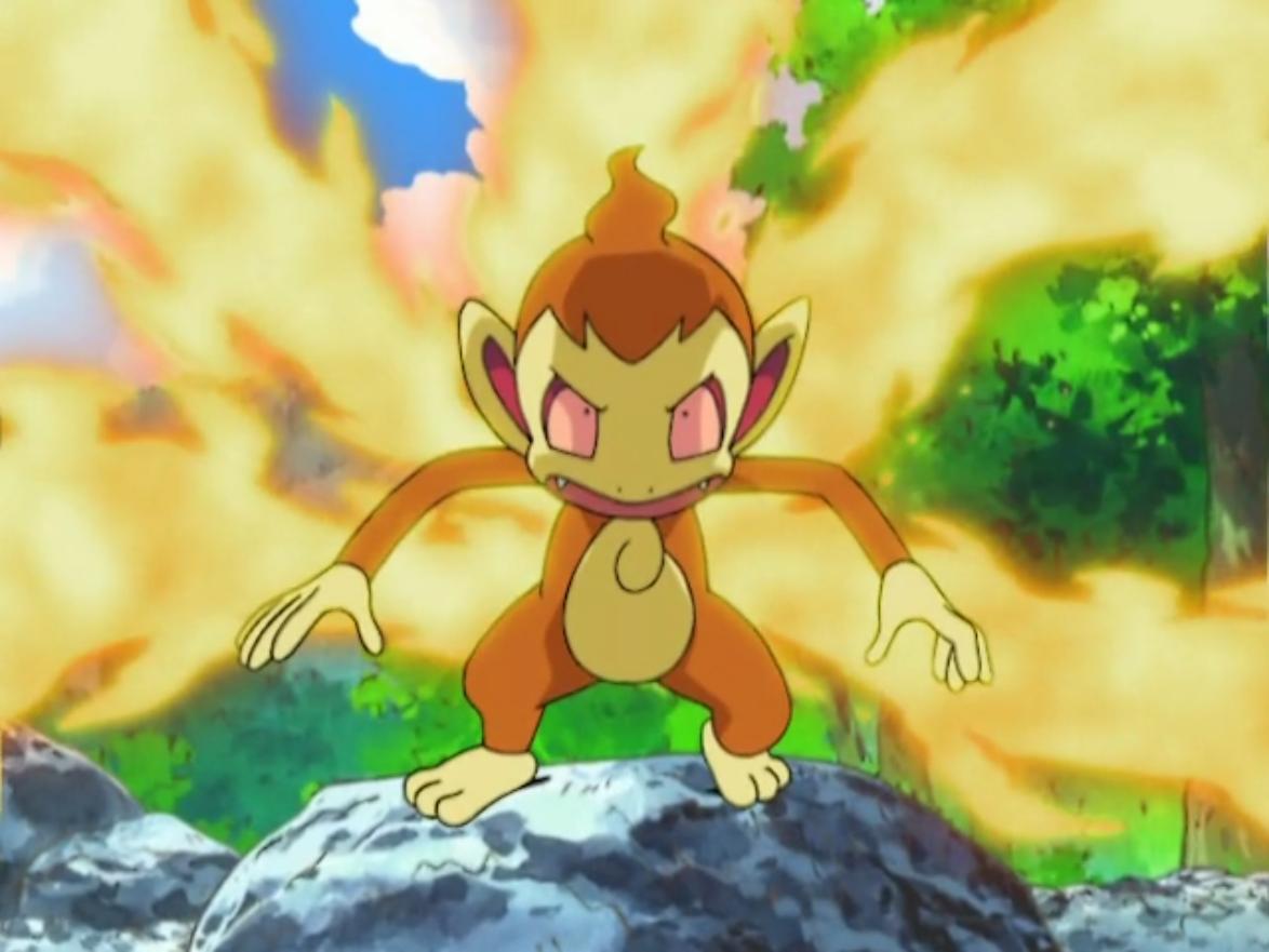 Image – Ash Chimchar Blaze.png   Pokémon Wiki   FANDOM powered by Wikia