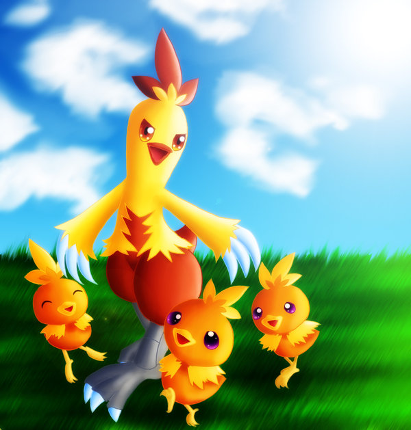 combusken and torchic by GNTS … – combusken and torchic by GNTS on DeviantArt – Combusken HD Wallpapers