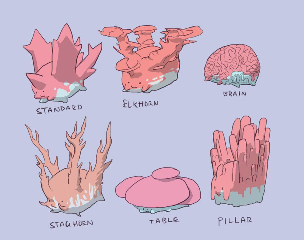 Corsola Variations by NimbusOwl49 on DeviantArt
