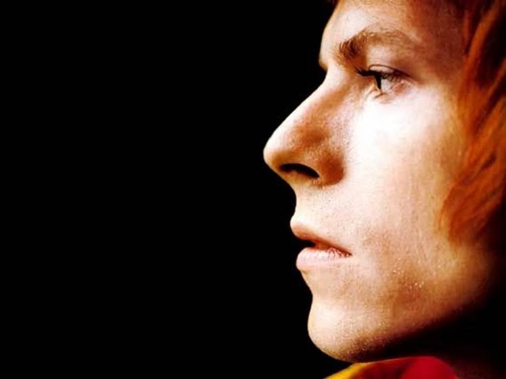 David Bowie 1024×768 Wallpaper 935005