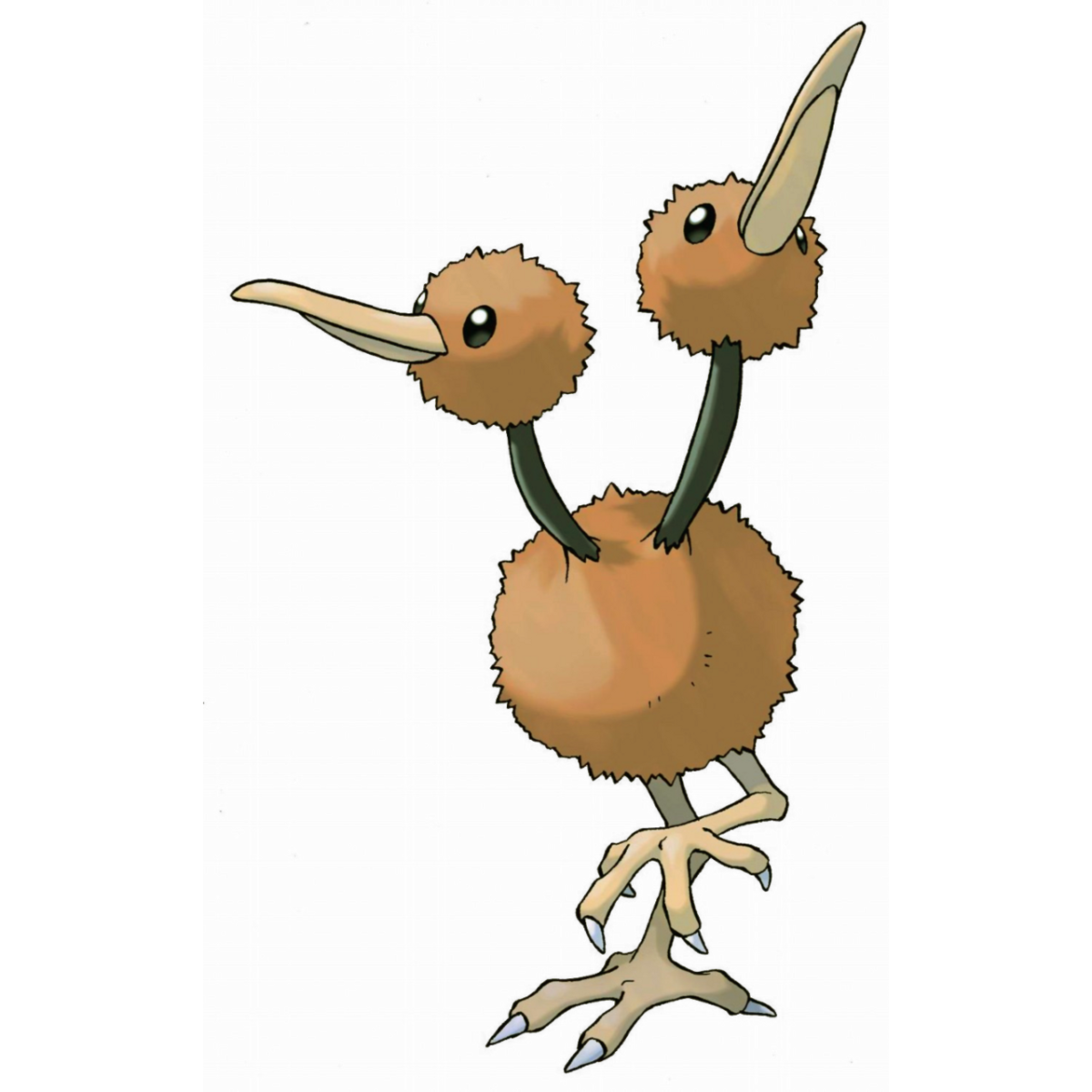 Doduo | Full HD Pictures