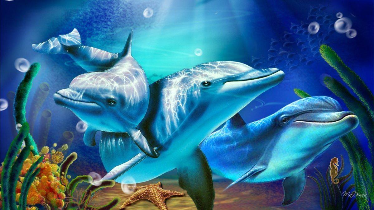 3D Living Dolphin HD Wallpapers – HD Wallpapers Inn