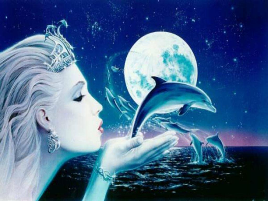 Free Dolphin Wallpaper   coolstyle