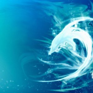 download Dolphins ♥ ~ – Dolphins Wallpaper (10345826) – Fanpop