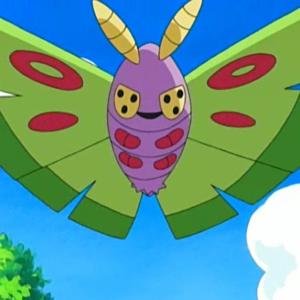 download Jessie's Dustox – Bulbapedia, the community-driven Pokémon encyclopedia
