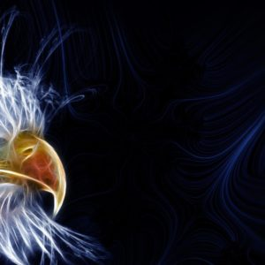 download Eagle Desktop Wallpaper   quote-net