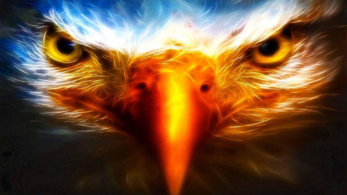 Eagle – DriverLayer Search Engine