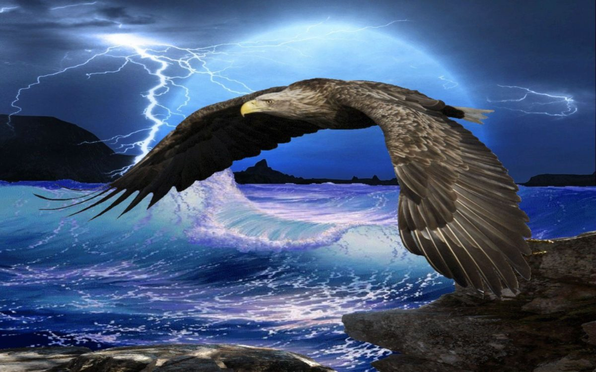 Flying Eagle HD Wallpapers | Eagle Flying HD Pictures | HD …