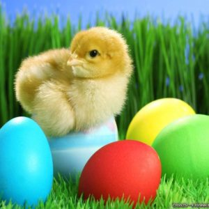 download gLaMoRoUs bLoG: Easter Wallpapers