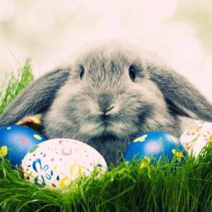 download Free Hd Easter Wallpaper Wallpaper | AbstractWallpaperHD.