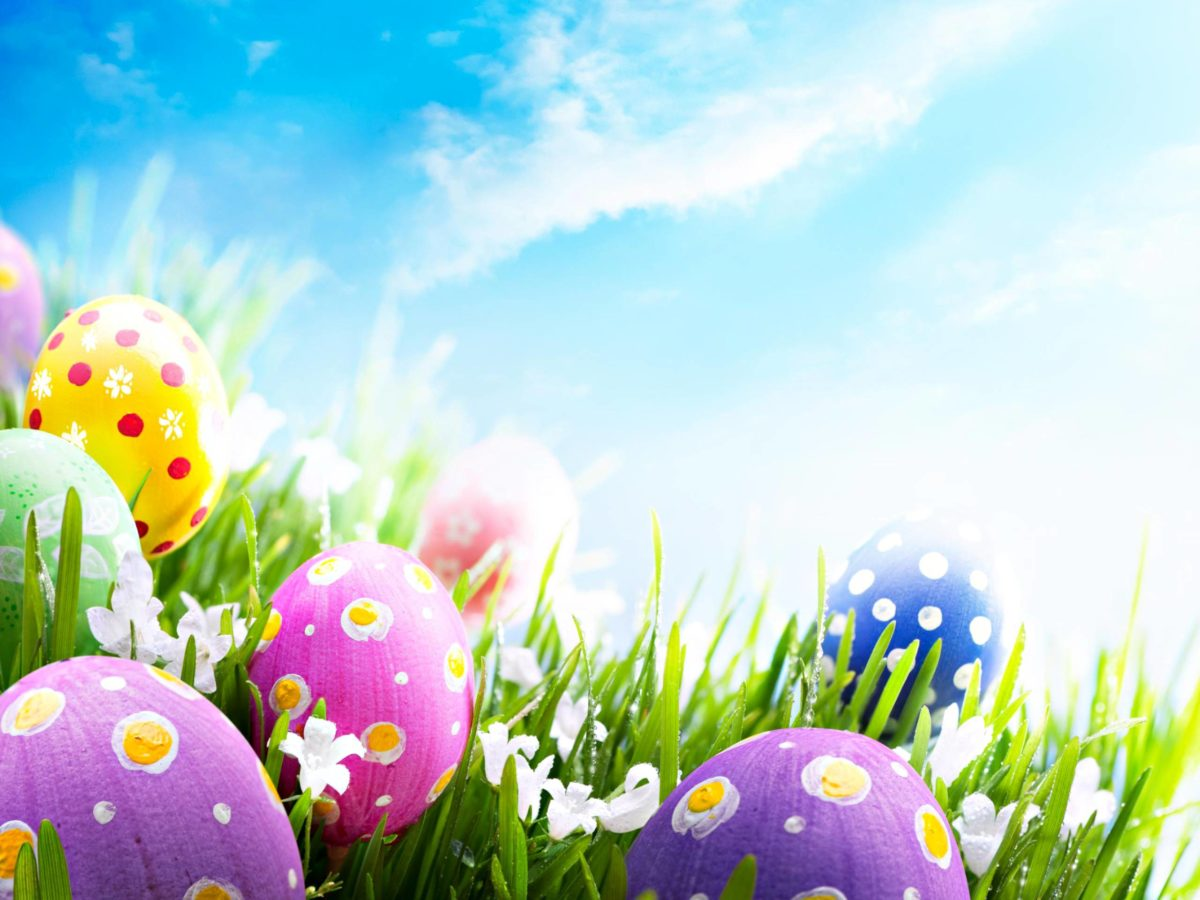 Easter Pics – Colours Desktop Wallpaper