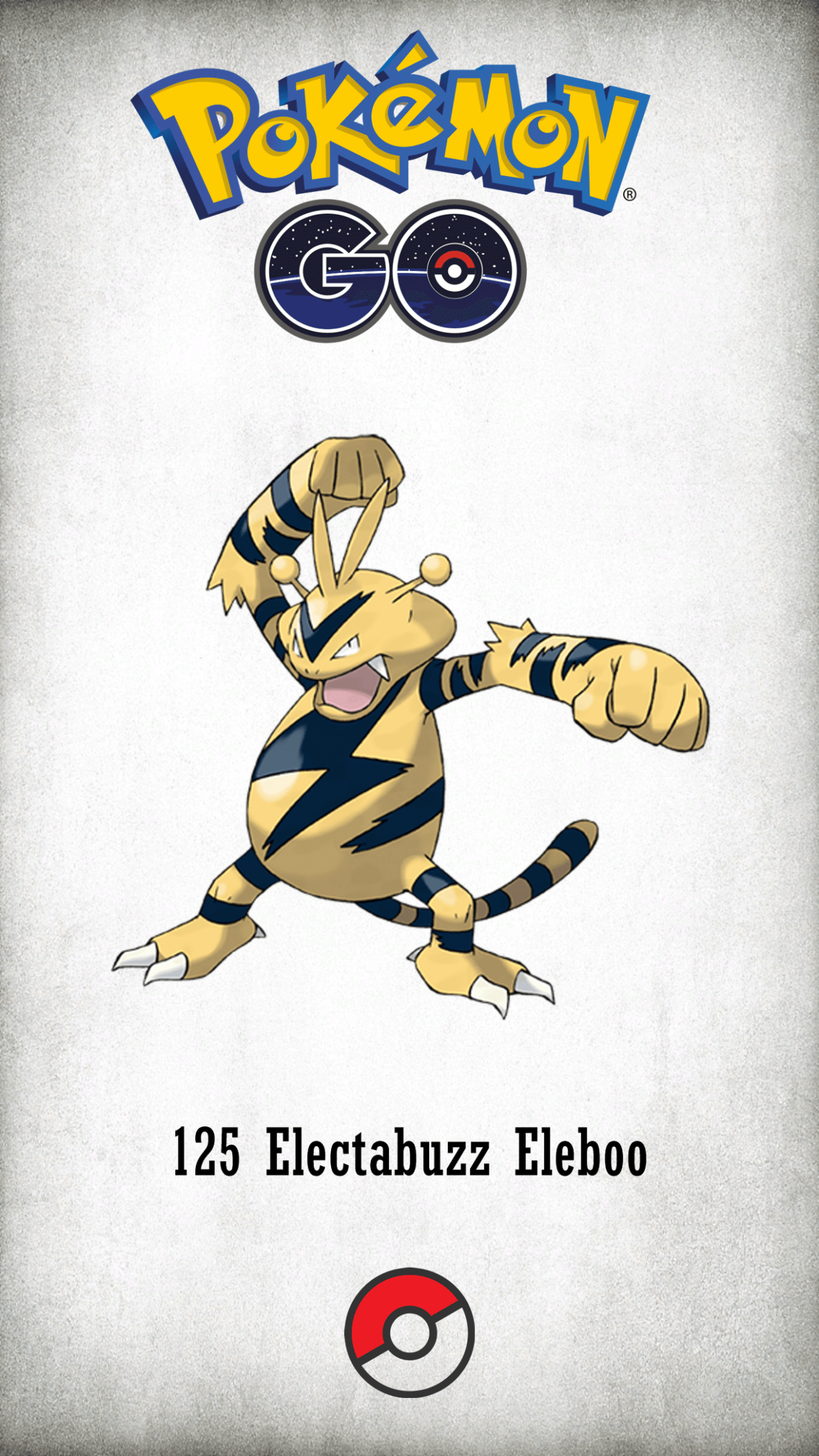 125 Character Electabuzz Eleboo | Wallpaper