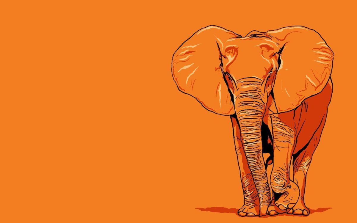 Elephant Wallpaper Art – Animal Wallpapers (7112) ilikewalls.
