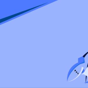 download OC Empoleon wallpaper, kinda minimalist, enjoy! – Imgur