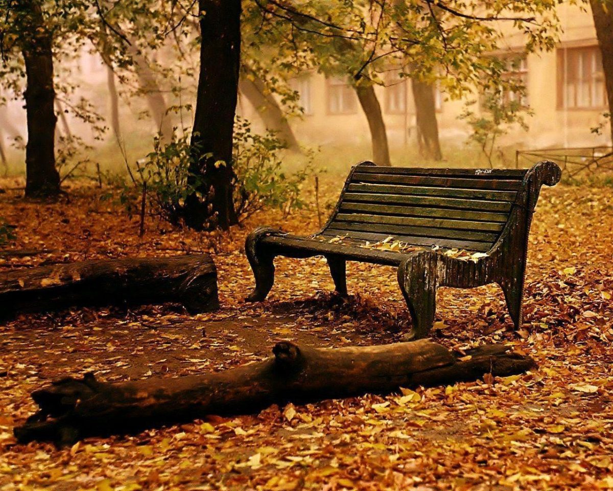 Fall HD Wallpapers | Fall Pictures | Autumn Wallpaper | Cool …