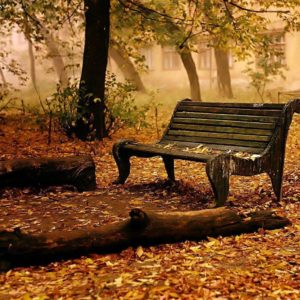 download Fall HD Wallpapers | Fall Pictures | Autumn Wallpaper | Cool …
