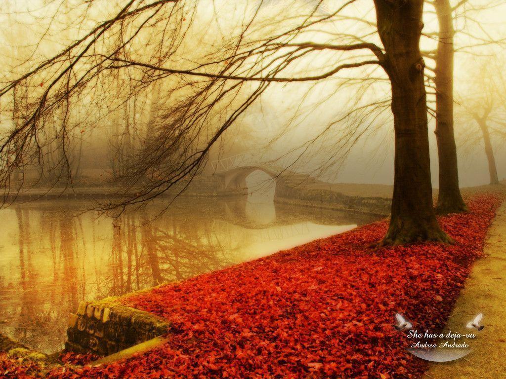 Autumn wallpaper – Autumn Wallpaper (9444951) – Fanpop